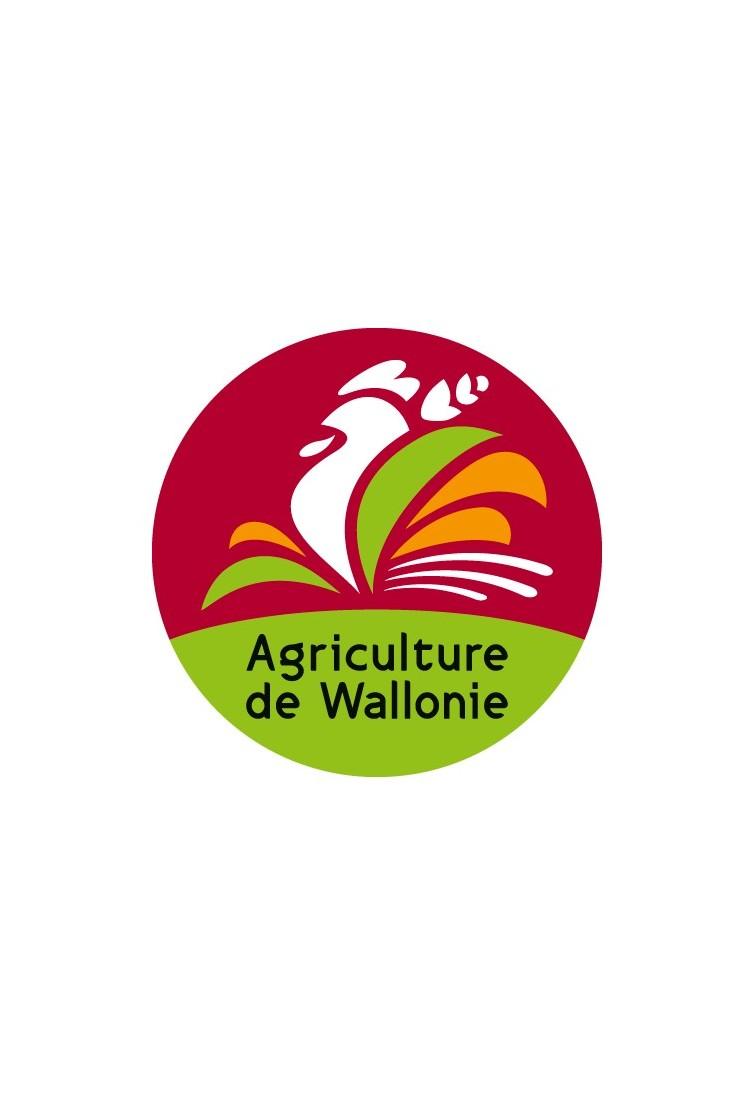 Zomer honing van La Roche en Ardenne